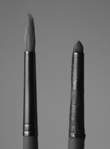 an un-used and a very used bristle brush